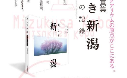 入荷のご案内  2013/05/01
