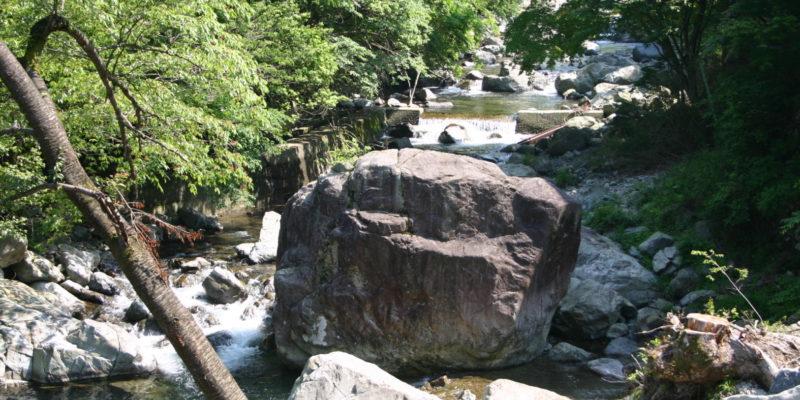 兵庫の渓流フィールド