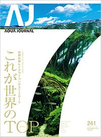 Vol.241