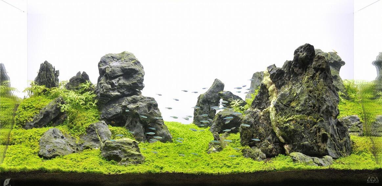カルデラの景観をイメージしたレイアウト