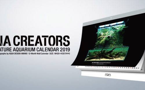 NA CREATORS CALENDAR2019