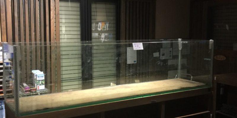 店内改装2016年