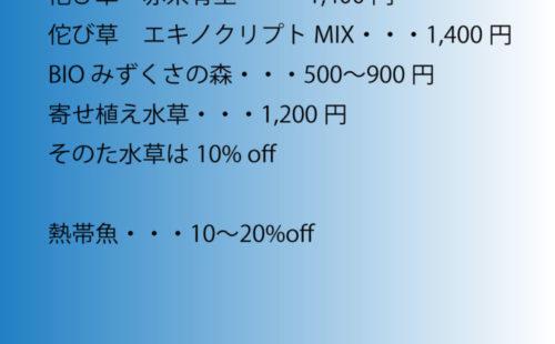 Sale01