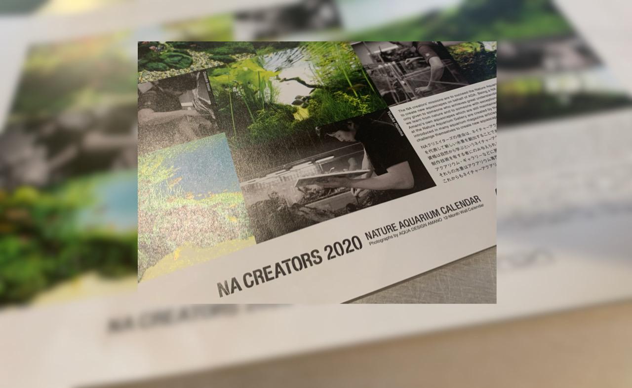 ADA NA CREATORS 2020