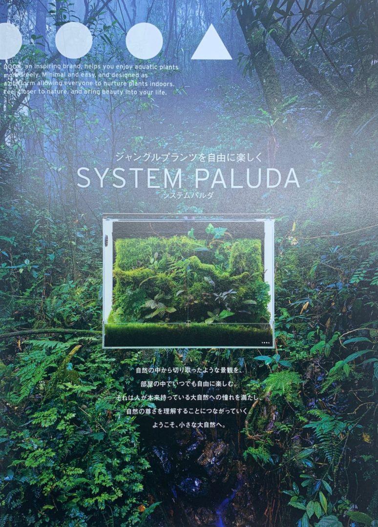 SYSTEM PALUDA