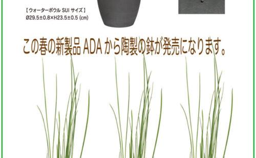 ADA陶製鉢SUI